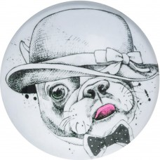 Холдер Popsocket Smile (Doggy in hat, Y534)