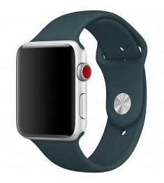 Ремешок Apple Watch 38mm (36)