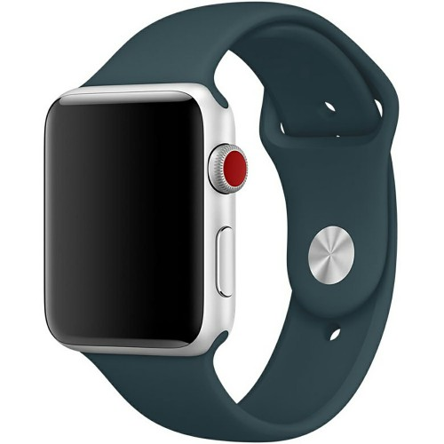 Ремешок Apple Watch 42mm (36)